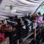 chaussures, Moria, Réfugiés, Lesvos, Grèce, Syrie