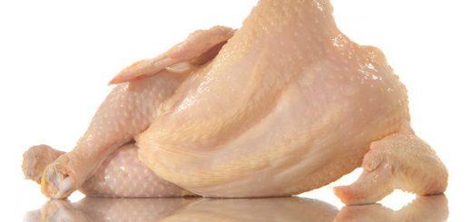 nude chicken